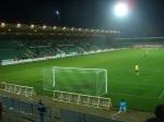 The home fans hidden in green